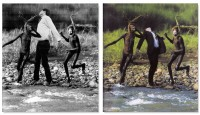 Longo and Silvester into nature - Diptych / Tweeluik