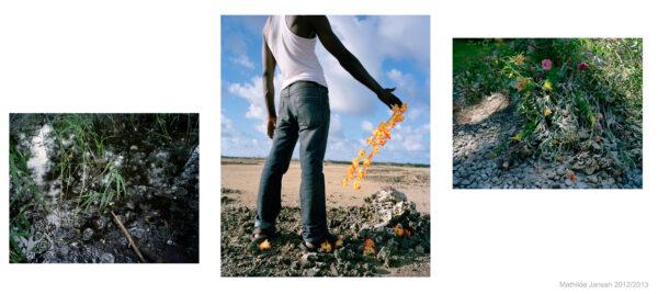 Exoticorum imaginis decem & Natural presumption (2012)